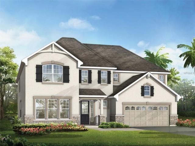 7950 Corkfield Avenue, Orlando, FL 32832 (MLS #O5561328) :: The Light Team