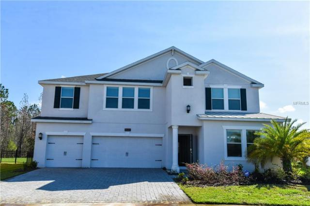 4666 Fairy Tale Circle, Kissimmee, FL 34746 (MLS #O5562713) :: Griffin Group