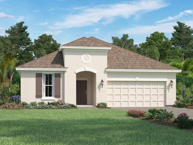 4722 Roycroft Terrace, Parrish, FL 34219 (MLS #O5562741) :: TeamWorks WorldWide