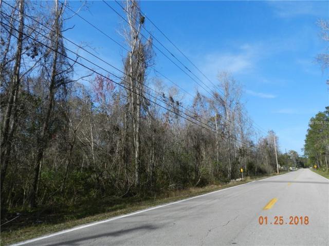 S Volusia Avenue, Pierson, FL 32180 (MLS #O5562836) :: Team Pepka