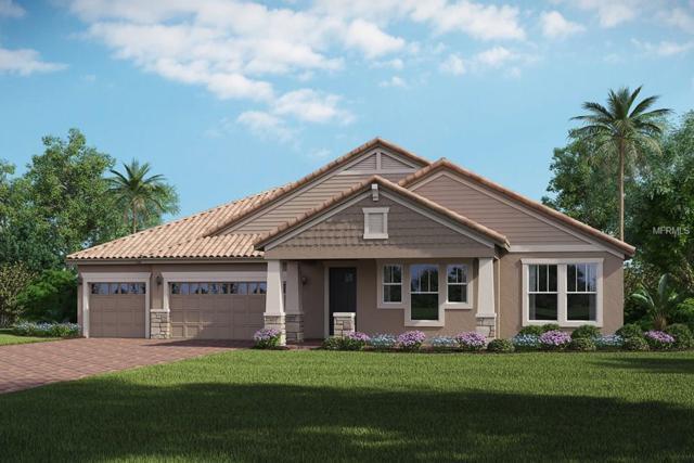 16233 Rock Coast Drive, Winter Garden, FL 34787 (MLS #O5563208) :: KELLER WILLIAMS CLASSIC VI