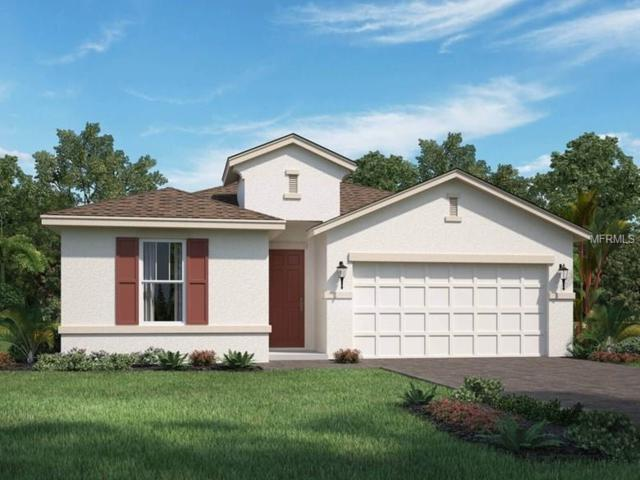 12592 Ryegrass Loop, Parrish, FL 34219 (MLS #O5563339) :: Medway Realty