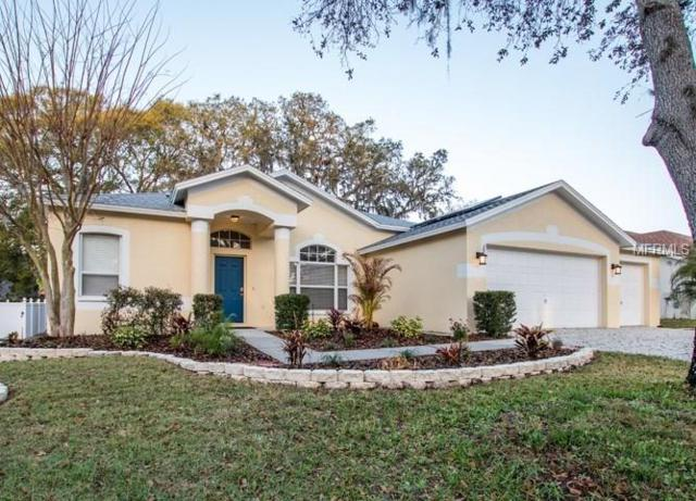 2930 Folklore Drive, Valrico, FL 33596 (MLS #O5563392) :: Griffin Group