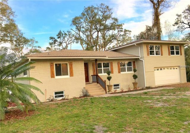 3535 Laughlin Road, Mount Dora, FL 32757 (MLS #O5563461) :: Cartwright Realty
