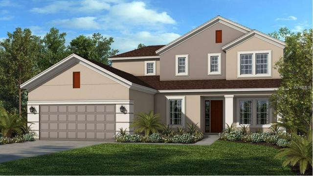13870 Jomatt Loop, Winter Garden, FL 34787 (MLS #O5563519) :: G World Properties