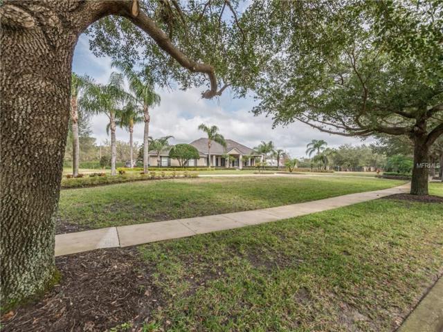 9633 Weatherstone Court, Windermere, FL 34786 (MLS #O5563638) :: G World Properties