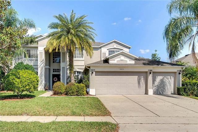 10033 Hart Branch Circle, Orlando, FL 32832 (MLS #O5563818) :: The Light Team