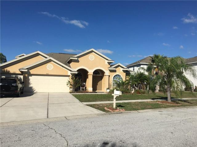 Riverview, FL 33579 :: Team Turk Real Estate
