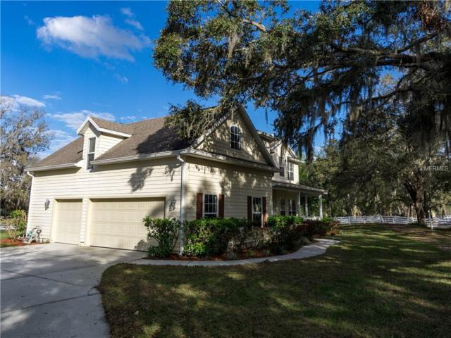 402 Kentucky Blue Circle, Apopka, FL 32712 (MLS #O5564440) :: The Light Team