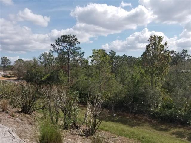 S Apopka Vineland, Orlando, FL 32821 (MLS #O5564502) :: RE/MAX Realtec Group