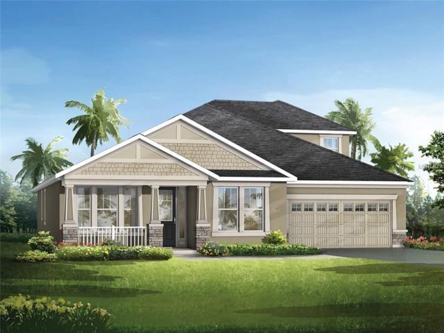 8133 Platts Avenue, Orlando, FL 32832 (MLS #O5564687) :: Dalton Wade Real Estate Group