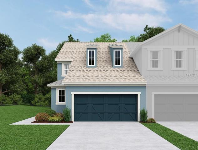 4536 Chinkapin Drive, Sarasota, FL 34232 (MLS #O5565178) :: Griffin Group