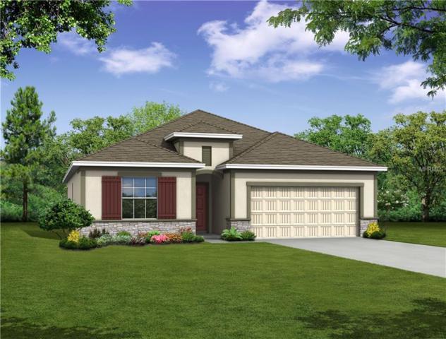 487 Pinecrest Loop, Davenport, FL 33837 (MLS #O5566102) :: Ideal Florida Real Estate