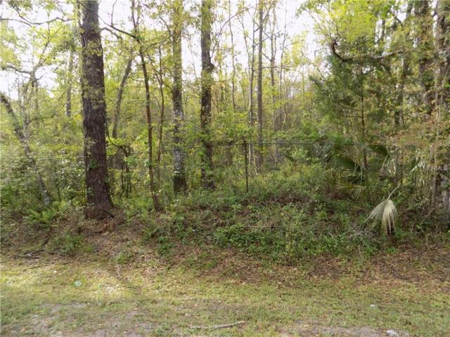 16210 Sunflower Trail, Orlando, FL 32828 (MLS #O5567930) :: The Duncan Duo Team