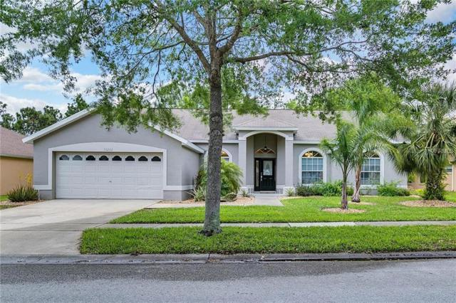 16252 Magnolia Hill Street, Clermont, FL 34714 (MLS #O5568641) :: Delgado Home Team at Keller Williams