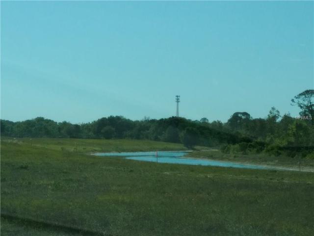 329 Adams View Lane, Auburndale, FL 33823 (MLS #O5569244) :: Griffin Group