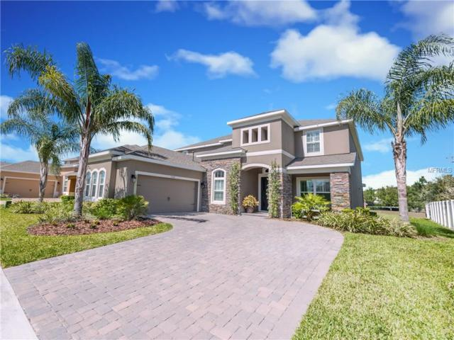 15324 Sandfield Loop, Winter Garden, FL 34787 (MLS #O5569932) :: Mark and Joni Coulter | Better Homes and Gardens