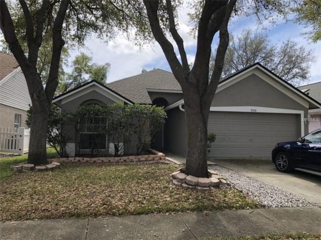 9728 Long Meadow Drive, Tampa, FL 33615 (MLS #O5569969) :: Delgado Home Team at Keller Williams