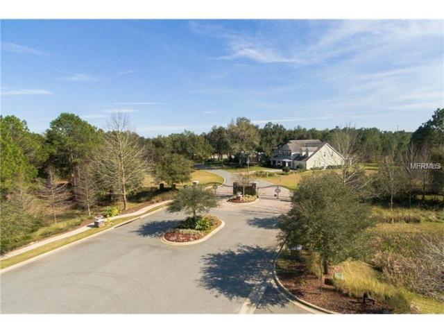 437 Long And Winding Road, Groveland, FL 34737 (MLS #O5570059) :: Vacasa Real Estate