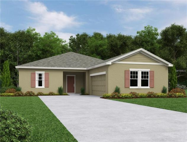 15342 Sugar Citrus Drive, Winter Garden, FL 34787 (MLS #O5570307) :: Griffin Group