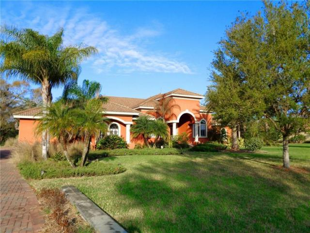 17826 Crystal Preserve Drive, Lutz, FL 33548 (MLS #O5570488) :: The Duncan Duo Team