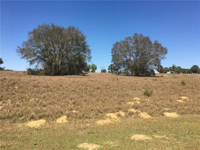 Lot 109 Bear Den Drive, Eustis, FL 32736 (MLS #O5570592) :: G World Properties