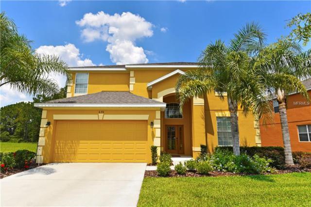 670 Orange Cosmos Boulevard, Davenport, FL 33837 (MLS #O5571245) :: The Light Team