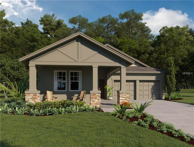 15763 Shaddock Drive, Winter Garden, FL 34787 (MLS #O5571341) :: Griffin Group