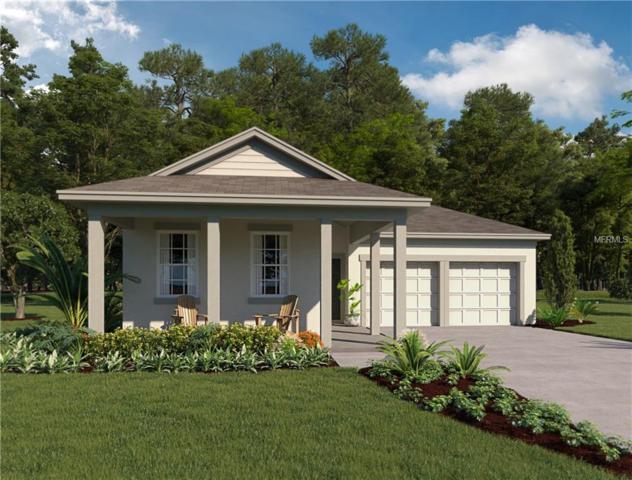 6331 Flat Lemon Drive, Winter Garden, FL 34787 (MLS #O5571345) :: Griffin Group