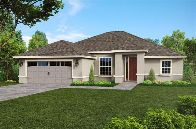8663 Lancelot Ave, North Port, FL 34287 (MLS #O5571963) :: Team Pepka