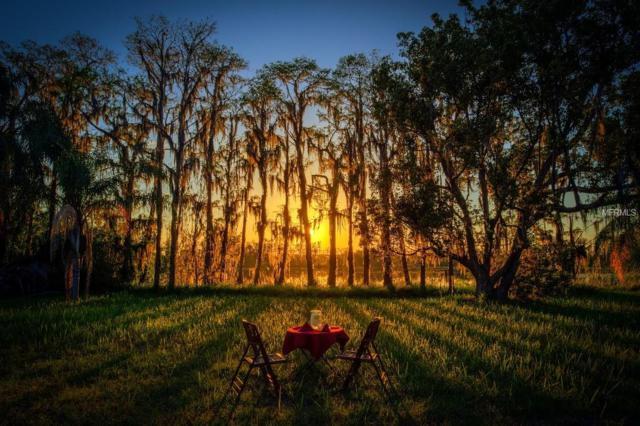16813 Arrowhead Boulevard, Winter Garden, FL 34787 (MLS #O5572379) :: The Duncan Duo Team