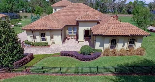 9645 Lake Hugh Drive, Gotha, FL 34734 (MLS #O5572666) :: G World Properties