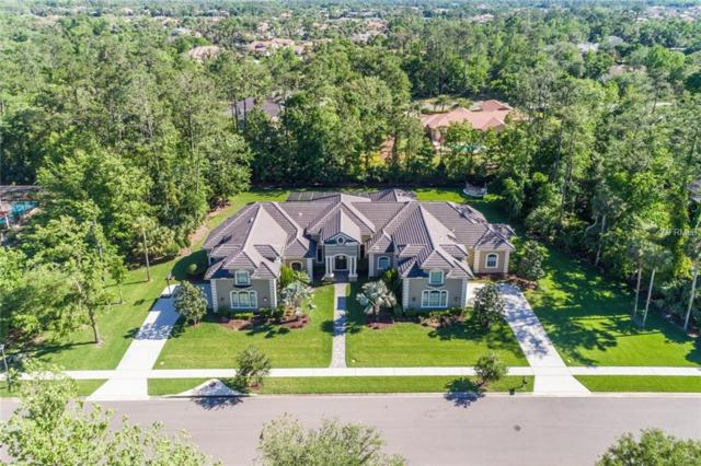 1736 Cottonwood Creek Place, Lake Mary, FL 32746 (MLS #O5700266) :: Team Pepka