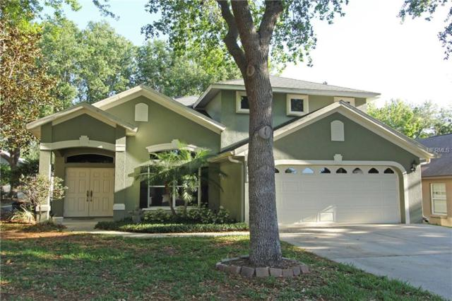 17421 Woodfair Drive, Clermont, FL 34711 (MLS #O5700492) :: The Duncan Duo Team