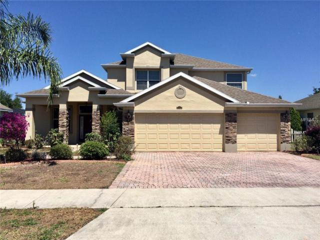 5025 Cape Hatteras Drive, Clermont, FL 34714 (MLS #O5700719) :: The Duncan Duo Team