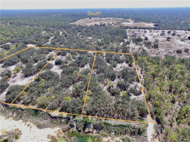 3195 & 3196 S Mcclure Point, Lecanto, FL 34461 (MLS #O5700855) :: The Duncan Duo Team