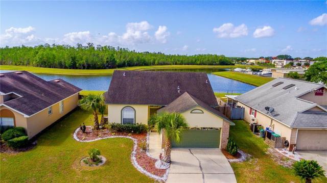 11898 Hullbridge Court, Orlando, FL 32837 (MLS #O5701358) :: Dalton Wade Real Estate Group