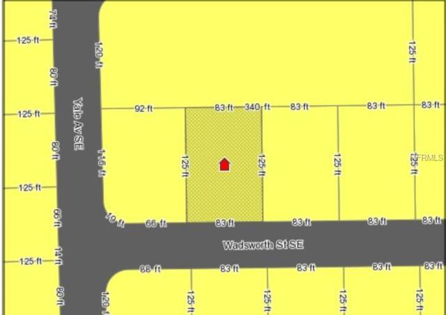 1215 Wadsworth Street SE, Palm Bay, FL 32909 (MLS #O5701742) :: Griffin Group