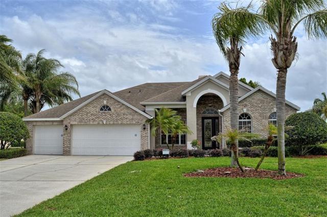 4026 Kilmarnock Drive, Apopka, FL 32712 (MLS #O5701952) :: Bustamante Real Estate
