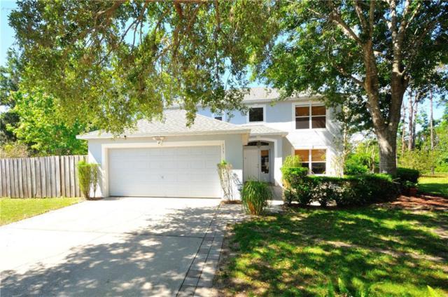 733 Crooked Creek Drive, Ocoee, FL 34761 (MLS #O5702113) :: Bustamante Real Estate