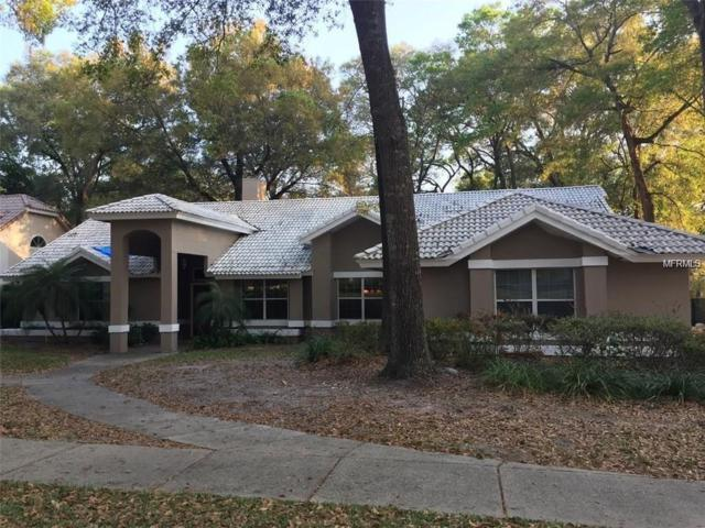 2448 Willow Springs Court, Apopka, FL 32712 (MLS #O5702492) :: Bustamante Real Estate