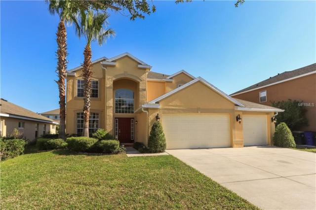 3660 Daydream Place, Saint Cloud, FL 34772 (MLS #O5702501) :: TeamWorks WorldWide