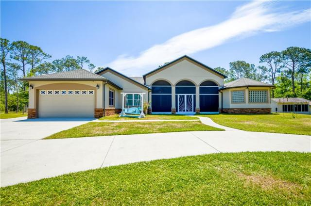 4445 Story Road, Saint Cloud, FL 34772 (MLS #O5702634) :: Godwin Realty Group