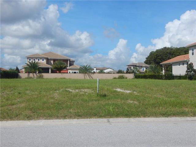 11538 Waterstone Loop Drive, Windermere, FL 34786 (MLS #O5702685) :: Bustamante Real Estate