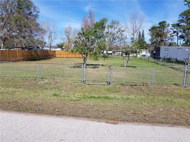 Lucy Avenue, Orlando, FL 32820 (MLS #O5702812) :: Godwin Realty Group