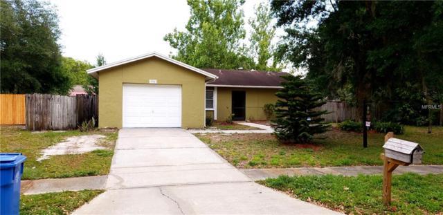 13913 Bridgeport Drive, Tampa, FL 33625 (MLS #O5702965) :: Cartwright Realty
