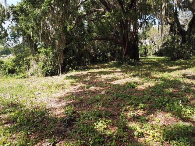 Baker Road, Umatilla, FL 32784 (MLS #O5703380) :: KELLER WILLIAMS CLASSIC VI