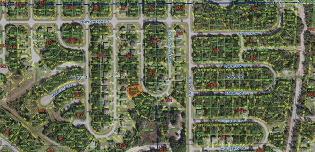 1429 Punta Gorda Drive, Poinciana, FL 34759 (MLS #O5703412) :: The Duncan Duo Team