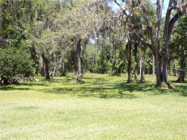 0 Paolini Drive, Deland, FL 32720 (MLS #O5704123) :: The Lockhart Team
