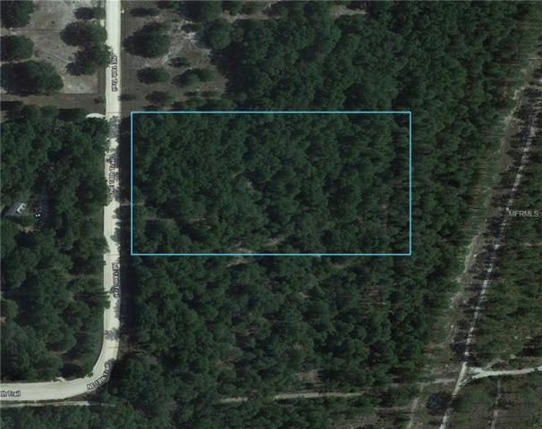 Ne 18 Tr, Trenton, FL 32693 (MLS #O5704670) :: The Duncan Duo Team